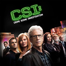 CSI: Crime Scene Investigation: Crime After Crime